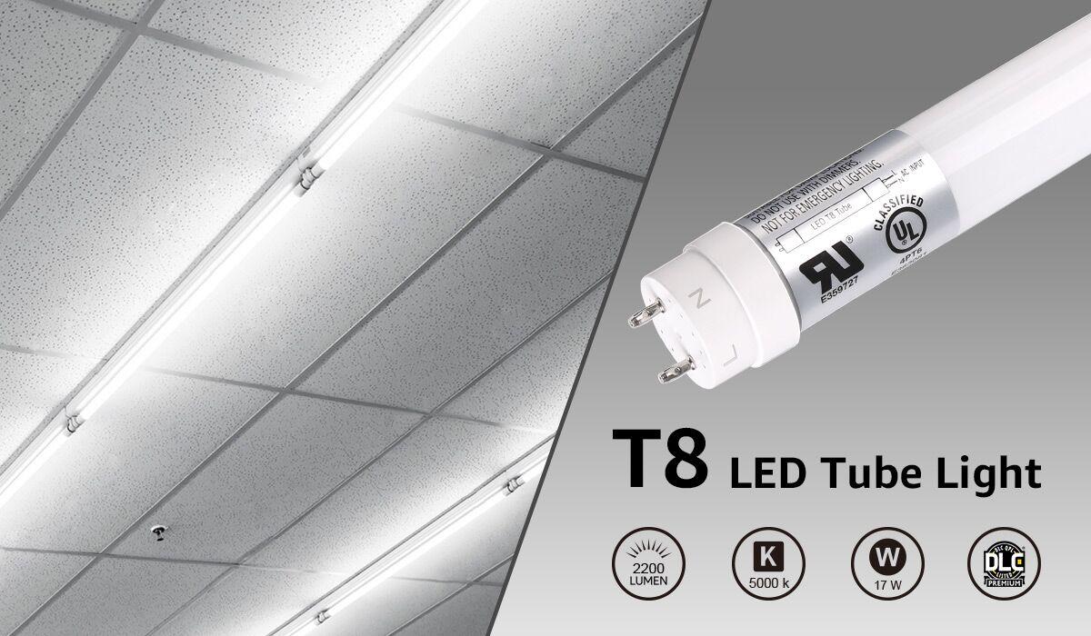 T8 Type B 4ft LED Tube Lights